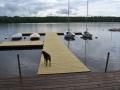 Float docks access ramp Birchdog